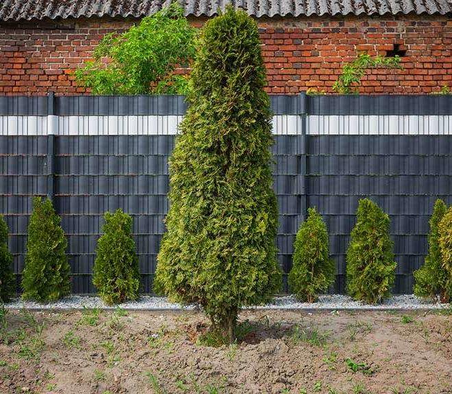Doppelstabmatten Sichtschutz - Zaunfelder