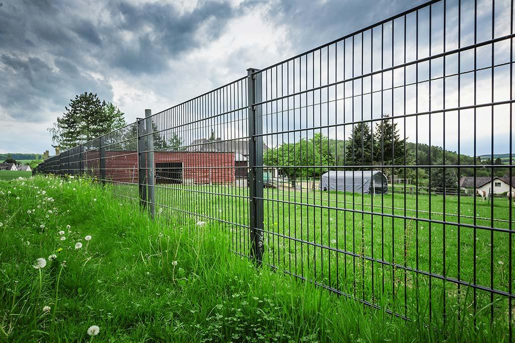 Zaun für die Landwirtschaft